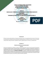 Organización y Desarrolllo de Programas de Asignaturas Basados en Competencia Derecho Penal III
