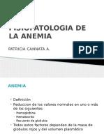 Fisiopatologia de Las Anemias