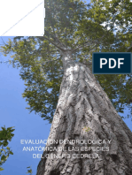 MINAM, 2017. Evaluación Dendrológica y Anatómica de Las Especies Del Género Cedrela.