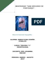 Generalidades de Anatomia Topografica