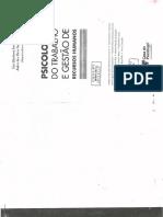 I) Psicologia Do Trabalho e Gestão de RH- Cap. 1.2 - A Psicologia Do Trabalho Em 3 Faces