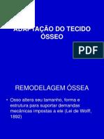 Adaptação_Tecido_Ósseo
