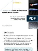 Monitereo Satelital de Las Cuencas Contaminadas Del Perú