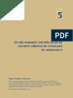 Os Mecanismos Terapêuticos de Um Rito Urbano de Consumo de Ayahuasca (Junguiano)