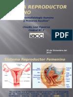 Claudio Leal Tarea 7 Anatomofisiologia