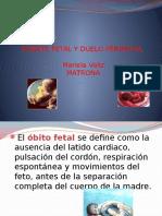 Muerte Fetal y Duelo Perinatal