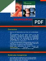 Biomoléculas-4S.pptx