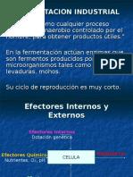 Fermentacion Industrial Clase 11