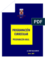 Programacion Curricular 1