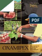 Oxamipex