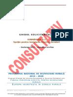 Gs Sm 6.1 - Varianta Consultativa