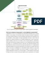 Tema de Discusión Complejo y Potencialidades