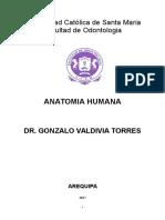 Anatomia Humana General Odontologia