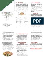 286047012-Leaflet-Diit-CKD.pdf