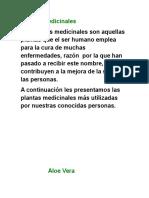Aloe Vera (Autoguardado)