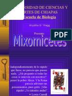 mixomicetes