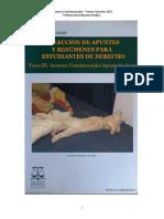 Acciones Constitucionales (David Ibaceta)