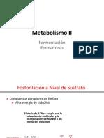 Fermentacion-Fotosíntesis
