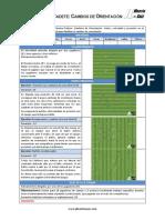 Sesion-Cadete-Cambios-orientacion.pdf