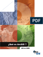 Introduccion en ArcGIS.pdf
