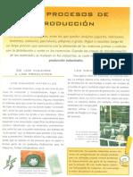 Enciclopedia Procesos de Producción