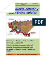Ciencias de la Vida y la Tierra I La cubierta Celular y  Membrana Celular.docx