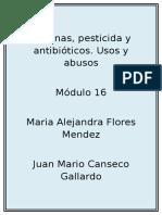 Floresmendez MariaAlejandra M16S4 Pi Usosyabusos