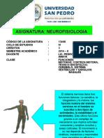 CLASE 7 - FUNCIONES MOTORAS.ppt