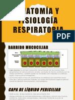 Anatomía y Fisiología Respiratoria