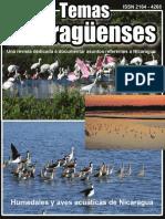 Revista de temas nicaragüenses No. 45