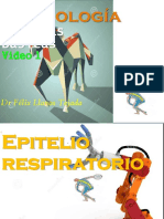 EPITelio respira 1  F Llanos video 1 color.pdf