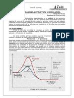 Enzmas Mecanismo Estructura y Regulacion