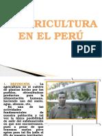 La Agricultura en El Peru