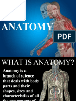 Austin Journal of Anatomy