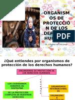 Organismos de Proteccion de Los DD HH INTERNACIONALES