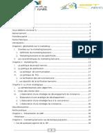 PFE .Marketing Bancaire;;;.docx