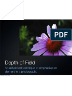 Introduction to Depth of Field in Digital Photography