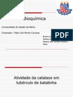 Trabalho de BioquimicaAtividade Da Catalase Em Tubérculo de Batatinha