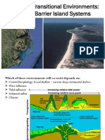 Beach-Barrier Islands System