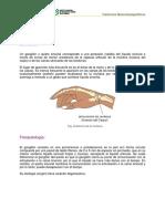 Ganglion.pdf