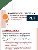 5. Agrobacterium, Gen Penanda & Pelapor (PP)