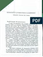 VIVEIROS DE CASTRO_Pensando o parentesco ameríndio.pdf