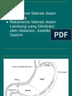 Mekanisme Sekresi Hcl Lambung