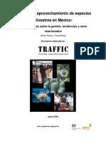 Comercio y Aprovechamiento de Especies Silvestres