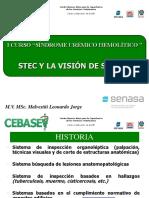 Malvestitti_CEBASEV.pdf