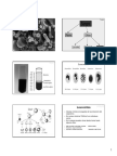 ConceptosInmunologiaFPT