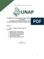 Programas de reingeniería para reducir el impacto ambiental.docx.docx
