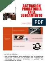 ACTUACION PROBATORIA NCPP