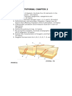 TUTORIAL CHAPTER 2 CGE 526.docx