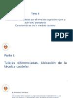 Derecho Procesal Civil III - Tema II